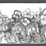 Natuurvrouw,  inkt op papier